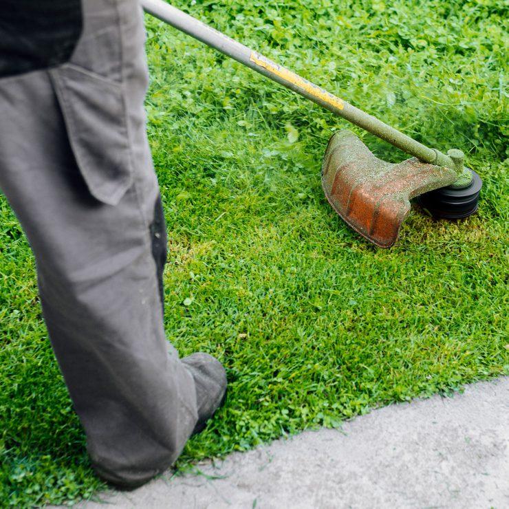 Bordeaux Services et Propreté - Prestations associées - Nettoyage des espaces verts, désherbage